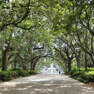 12 Best Day Trips from Savannah, Georgia