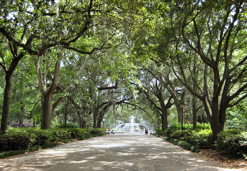 day trips from Savannah